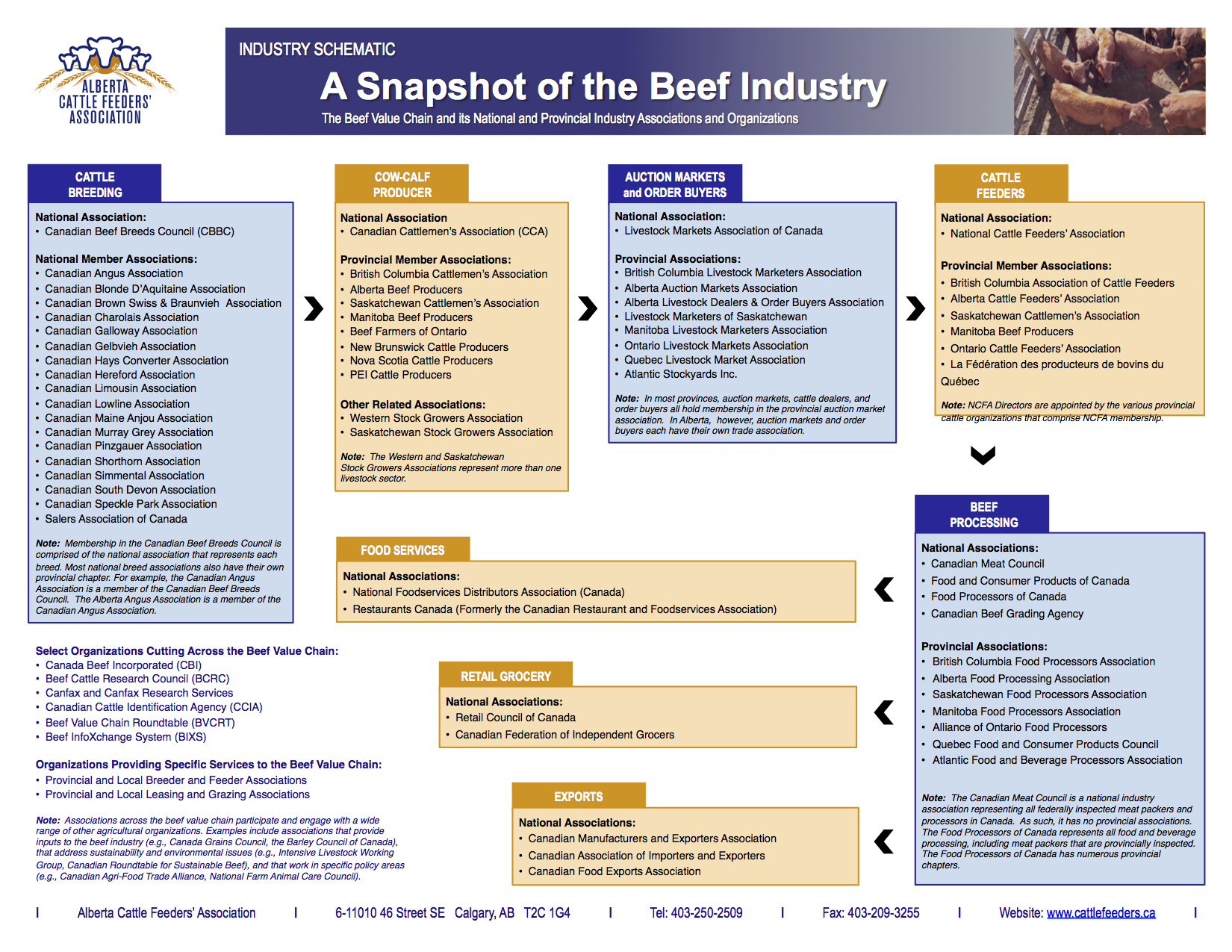 ACFA Beef Value Chain 15.07.04 copy